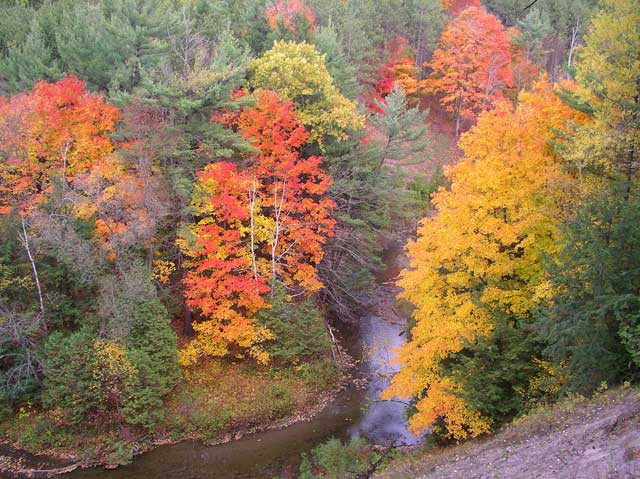 Willow Creek Ravine in fall